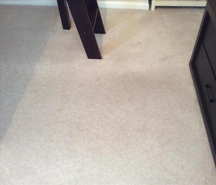 Carpet Cleaning - Greenville, NC After