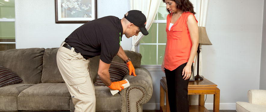 Greenville, NC carpet upholstery cleaning